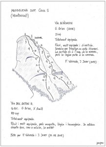40c. magdalena sup. DOC ANTON R, ACROMION