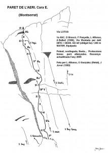 537. paret de l'aeri. lotus