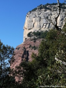 523.1. Cingles del Pla de Dalt (J Jover,2011)
