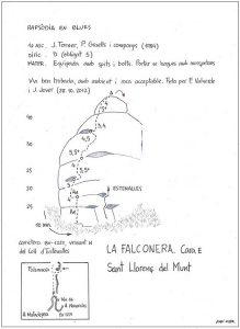 1161a-falconera-rapsodia
