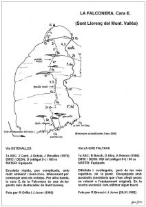 1161b-falconera-de-s-llorenc-estenalles-la-que-faltava